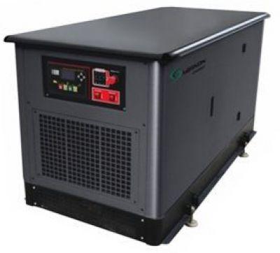 Газовый генератор Mirkon Energy MKG31T